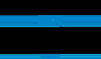 Never Summer Labs Logo